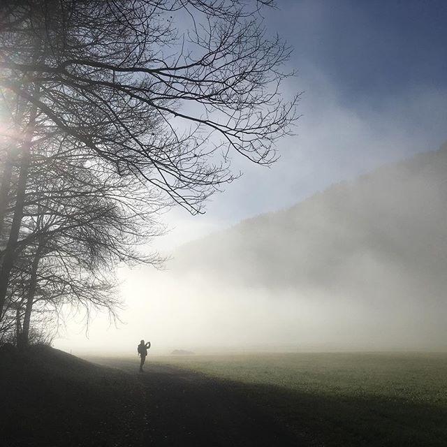 landscape fog landscapephitographie ötztal landschaftsfotografie pictureoftheday