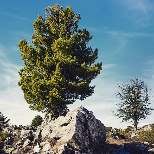onthetop🔝 austria ötztal pictureoftheday autumn faltergartenköpfle hauerkogel landscapephotography onthetopoftheworld herbst landschaftsfotografie