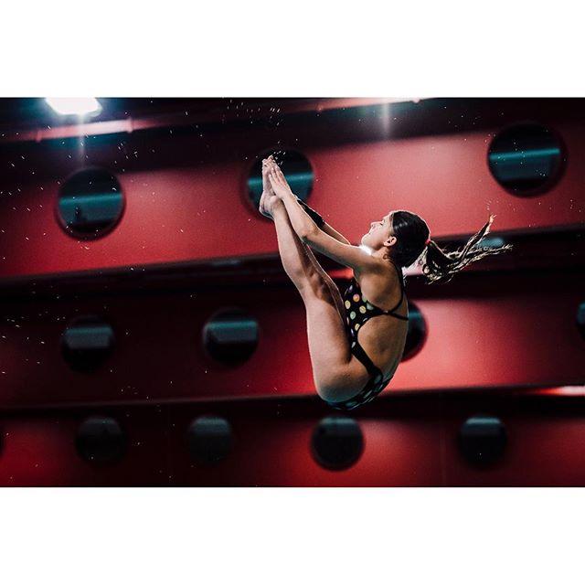 wasserspringen girls sports sportsphotography reportagespotlight diving igersvienna