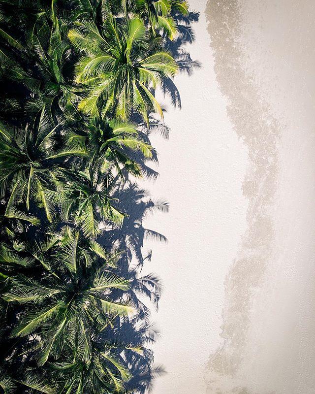 beach danang aerialphotography dronephotography palmtrees paradise vietnam