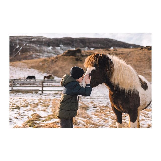 passportable wonderful_places travelgram nature mountain iceland openmyworld stayandwander ilovetravel boy instatravel goplayoutside travelnow clickmoms clickpro horse icelandic icelandichorse exploremore bestvacations planetdiscovery hetravels travelawesome tasteintravel icelandicphotographer traveldeeper horses travelstoke wanderlust