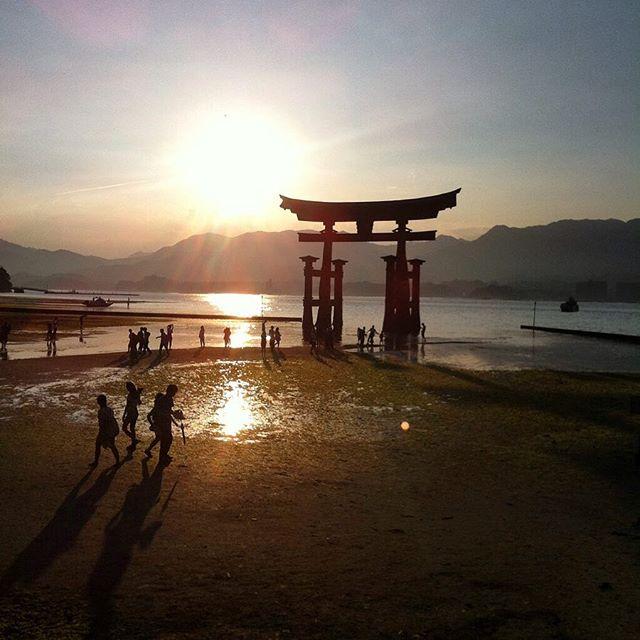 japan torimiyajima love japon travelingram travelphotography viajar itsukushima sunset miyahima tori