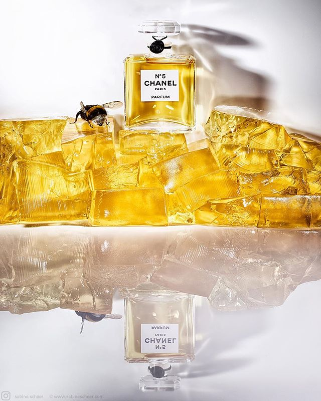 yellow chanelno5 chanel sabinescheer fotografenagentur rockenfeller_goebels jello bffde bumblebee
