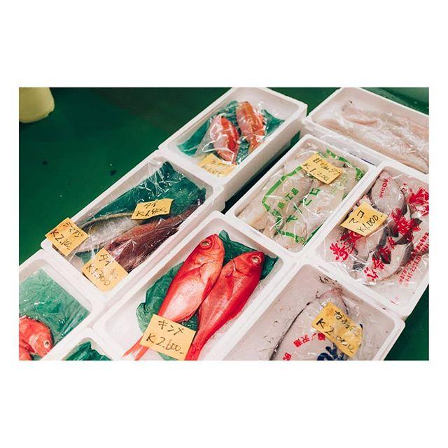 solarcollective imaginarymagnitude portraiture palepalmcollection ourmag igers fish tokyo japan market somewheremagazine japow streetportraits portraits minimalzine oftheafternoon subjectivelyobjective 35mm vsco