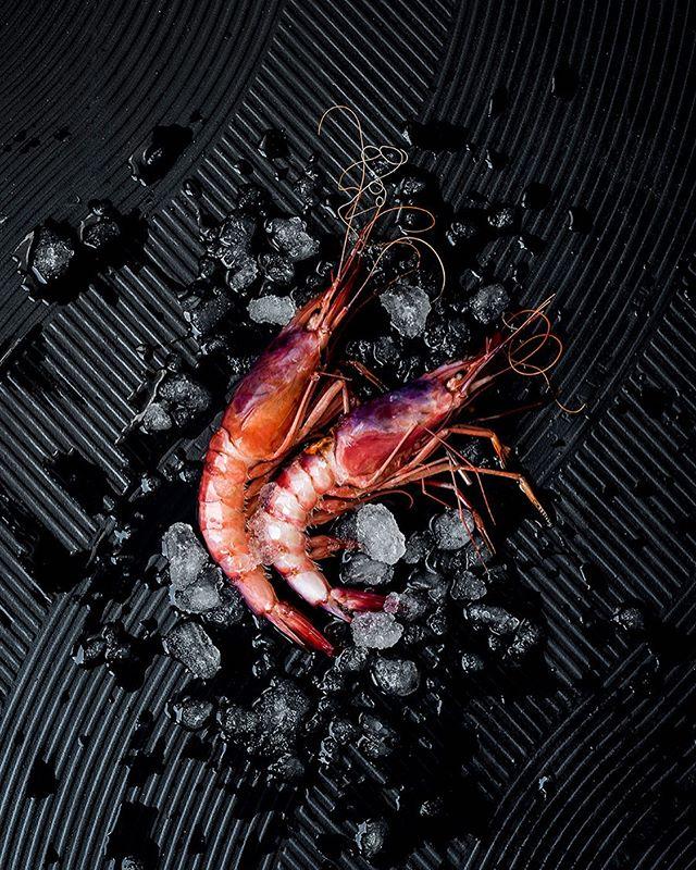 icebed fresh kemafoodculture kemafoodacademy summer shrimp